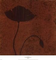 Poppy (Metallic) Framed Print