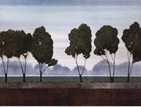 Six Trees Fine Art Print