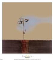 Zen Blossom I Framed Print