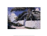 A Garden in Nassau, 1885 Fine Art Print