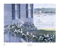 Harbor Roses Fine Art Print