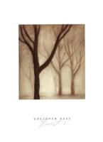 Forest I Fine Art Print