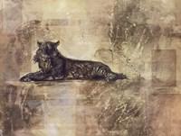 Tiger Profile Fine Art Print
