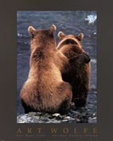 Two Bear Cubs Fine Art Print