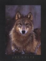 Woodland Pride, Montana Framed Print