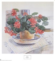 Geraniums, 1986 Fine Art Print
