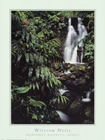 Rainforest Waterfall, Hawaii Framed Print