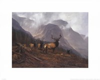 Bookcliffs Elk Framed Print