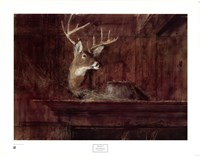 Eleven Pointer, 1985 Fine Art Print