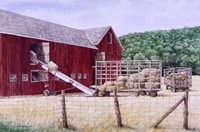 Hay Day Fine Art Print