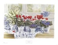Windowsill Garden Fine Art Print