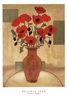 Crimson Poppies Fine Art Print