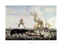 Currier and Ives - Whale Fishery Fine Art Print