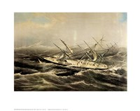 Clipper Ship Comet Fine Art Print