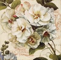 Les Jardin III Fine Art Print