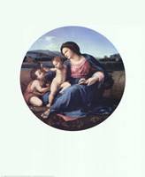 Alba Madonna, c.1514 Fine Art Print