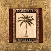 Stately Palm II Fine Art Print