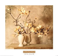 Magnolia Branches Framed Print