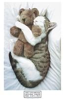 The Cat's Pet Fine Art Print