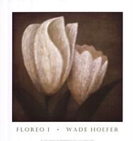 Floreo I Fine Art Print