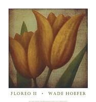 Floreo II Fine Art Print
