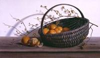 Oranges Fine Art Print