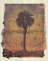 Palm Study 2 Fine Art Print
