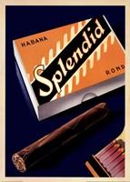 Splendid Habana Fine Art Print