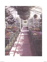 Greenhouse Effect Fine Art Print