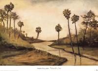 Palmetto Cove Fine Art Print