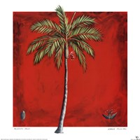 Princess Palm Fine Art Print