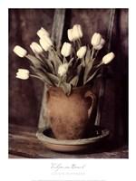 Tulips on Bench Fine Art Print