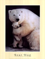 Bear Hug Fine Art Print