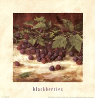 Blackberries Fine Art Print