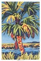 Pine Island Palm Fine Art Print
