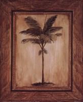 Palma I Fine Art Print