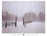 White Fog #2 Fine Art Print