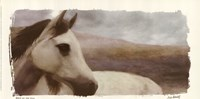Horse On The Hill Fine Art Print