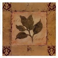 Solomon's Seal Fine Art Print