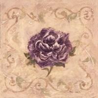 Paeonia De Lavendre Fine Art Print