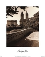 Central Park Bridges I Framed Print