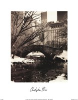 Central Park Bridges IV Framed Print