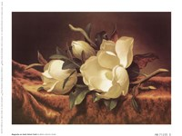 Magnolia On Gold Velvet Cloth Fine Art Print