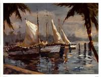 Tropical Sail Fine Art Print