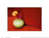 2 Daisies Fine Art Print