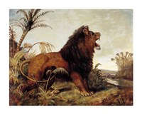 Lion in the Jungle Fine Art Print