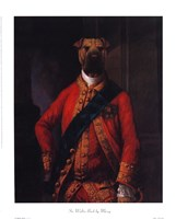 Sir Walter Bark Framed Print
