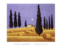 Cypress and Hay Fine Art Print
