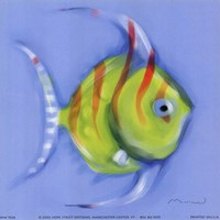Striped Angel Fish Fine Art Print