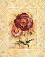 Classic Camellia Fine Art Print